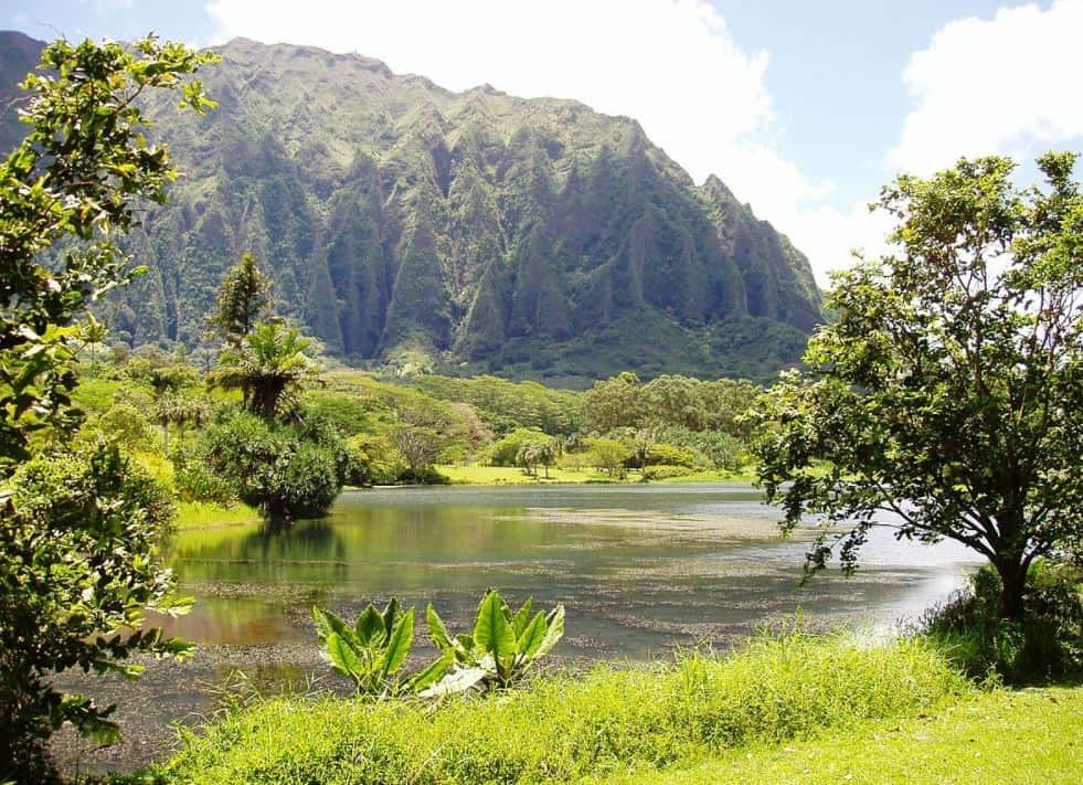 Ho'omaluhia Botanical Garden lake