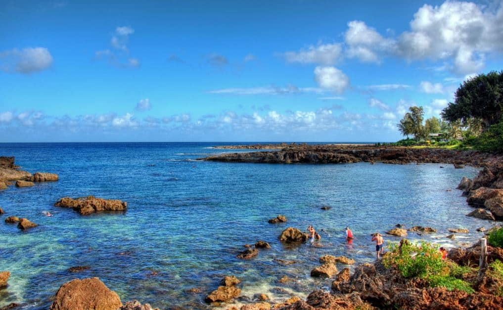 Sharks cove hawaii